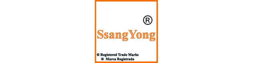 Productos y accesorios de SsangYong, llaves y electrónica.